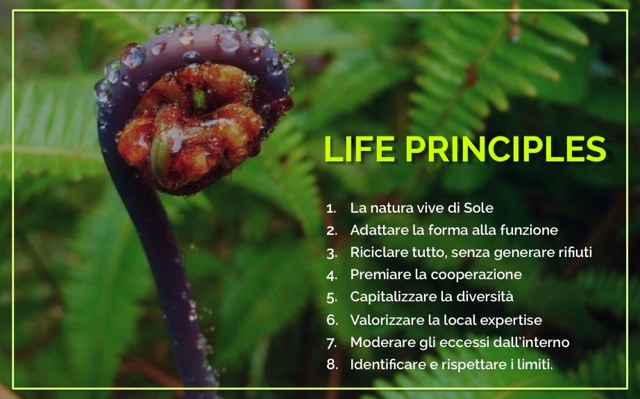 I Life Principles individuati da Janine Benyus.