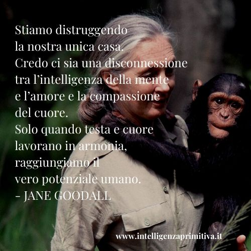 Jane goodall earth day 2020